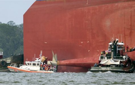 Final Four Crewman Rescued from the Golden Ray